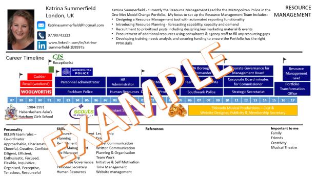 CV Visual Image - example